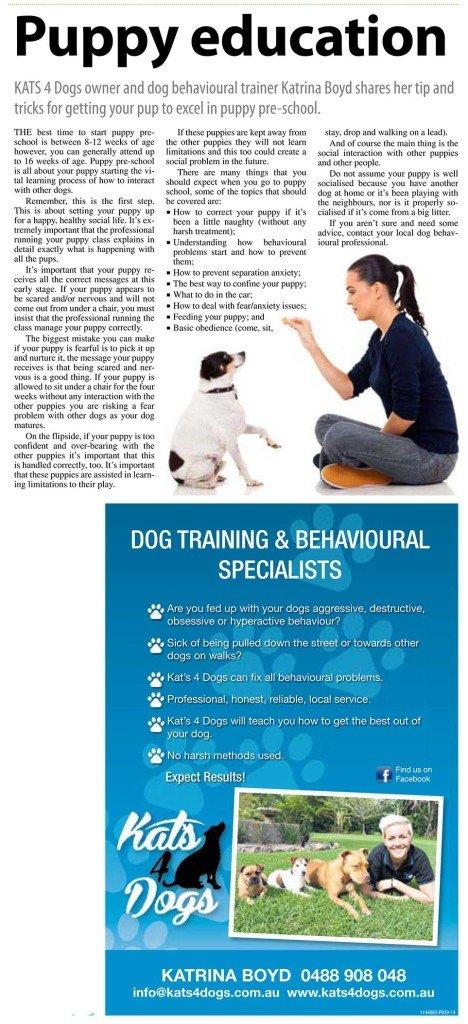Puppy Education, Noosa-Today_20140717_P46