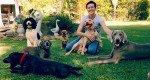 In Home Assessment & Behavioural Training for dogs